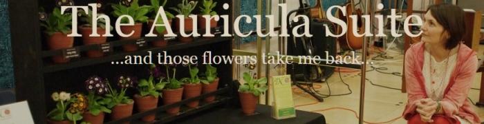 Auricula header