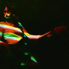 Lou Stingray