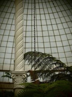 Botanical Gdns