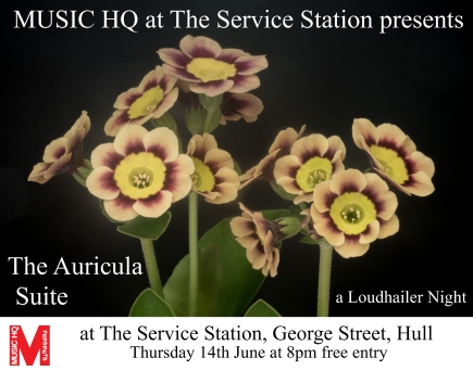 The Auricula Suite